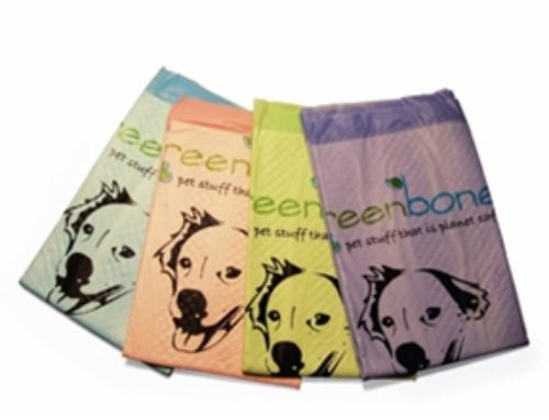 Introducing Greenbone Training Pads